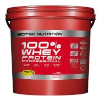 100% Whey Protein Professional, 5000 g - Scitec Nutrition